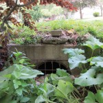 Inlet for storm drain
