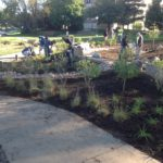 Plant installation at UNO Welcome Center Bioretention Gardens